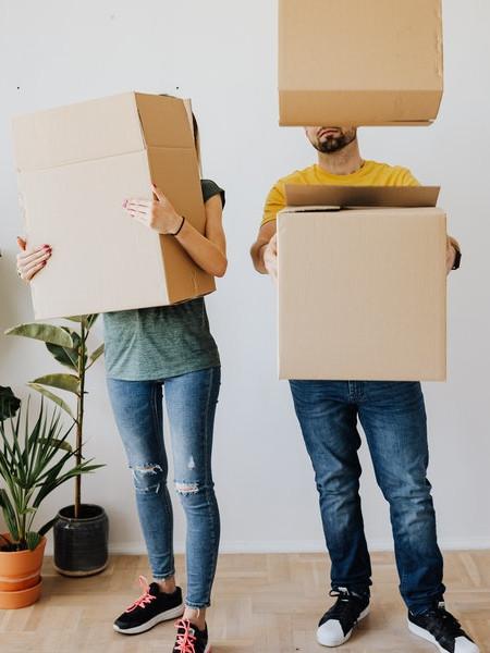 collecte de cartons